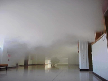 Smoke Warden Perth Evacuation Training